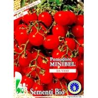 POMODORO CILIEGINO NANO MINIBEL - BIOSEME 7160