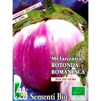 MELANZANA BIANCA SFUMATA DI VIOLA ROMANESCA - BIOSEME 2805