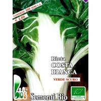 BIETA VERDE COSTA LARGA BIANCA - BIOSEME 0601