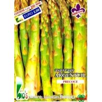 ASPARAGO ARGENTUIL PRECOCE - BIOSEME 0402