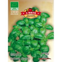 BASILICO ITALIANO CLASSICO- ARCOIRIS