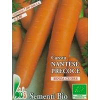 CAROTA NANTESE PRECOCE - BIOSEME 1004