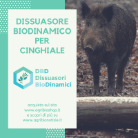Dissuasore BioDinamico per il Cinghiale - 1 lt