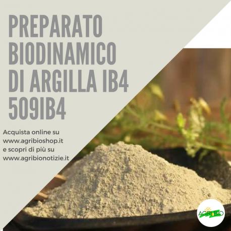 509IB4 PREPARATO DI ARGILLA IB4