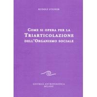 """COME SI OPERA PER LA LIBRO """"COME SI OPERA PER LA TRIARTICOLAZIONE SOCIALE"""" - Rudolf Steiner"""
