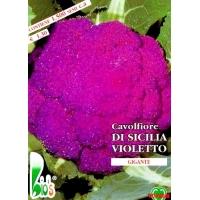 CAVOLFIORE VIOLETTO DI SICILIA - BIOSEME 1107