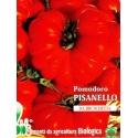 POMODORO FIORENTINO PISANELLO - BIOSEME 3249