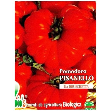 POMODORO PISANELLO - BIOSEME 3249