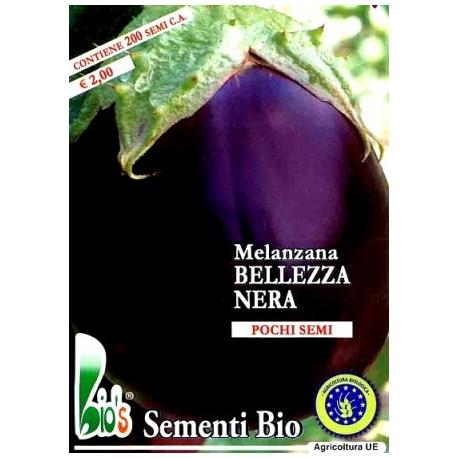 MELANZANA BELLEZZA NERA - BIOSEME 2801