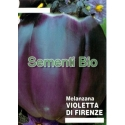 MELANZANA ROTONDA VIOLETTA DI FIRENZE- BIOSEME 2807