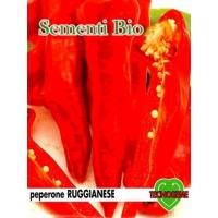 PEPERONE RUGGIANESE PICCANTE - BIOSEME 3051
