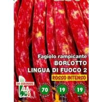 FAGIOLO RAMPICANTE DA SGRANARE BORLOTTO LINGUA DI FUOCO - BIOSEME 2312