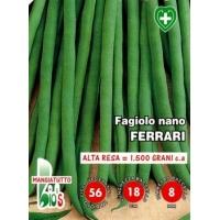 FAGIOLO NANO MANGIATUTTO FERRARI EXTRAFINO - BIOSEME 2356