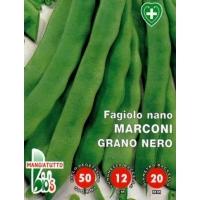 FAGIOLO NANO MANGIATUTTO MARCONI GRANO NERO - BIOSEME 2395