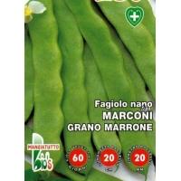 FAGIOLO NANO MANGIATUTTO MARCONI GRANO MARRONE - BIOSEME 2397
