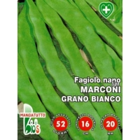FAGIOLO NANO MANGIATUTTO SUPERMARCONI GRANO BIANCO - BIOSEME 2396