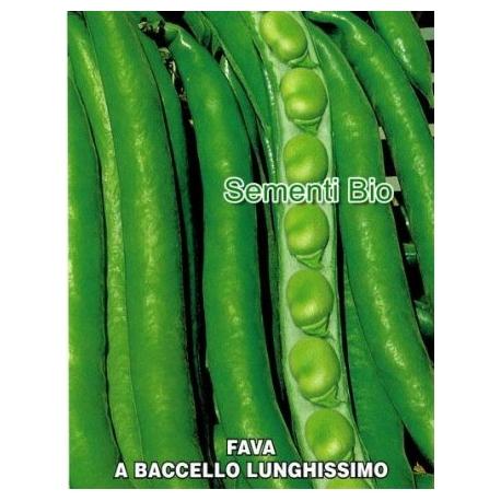 FAVA SLONGA - BIOSEME 2402