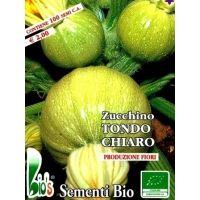 ZUCCHINO TONDO VERDE CHIARO DI NIZZA - BIOSEME 4382