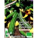 ZUCCHINO SAN PASQUALE - BIOSEME 4310