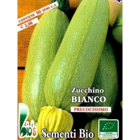 ZUCCHINO BIANCO - DI TRIESTE - BIOSEME 4383