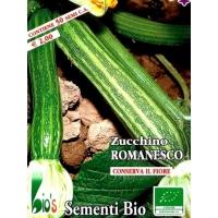ZUCCHINO ROMANESCO - BIOSEME 4386