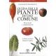 Guida delle piante di uso comune - De Rougemont G.