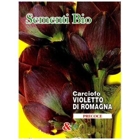 CARCIOFO VIOLETTO DI ROMAGNA - BIOSEME 0801