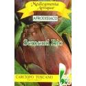 CARCIOFO TOSCANO - BIOSEME 7121