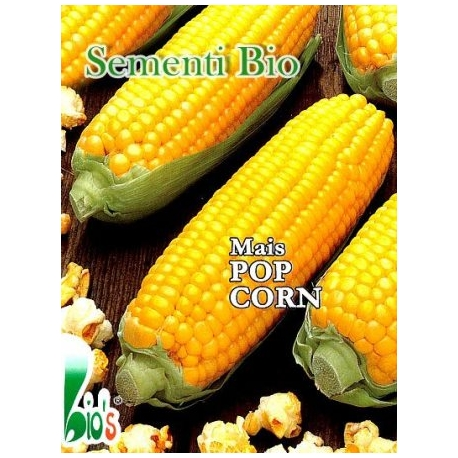 MAIS POP CORN - BIOSEME 5004