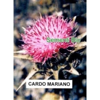 CARDO MARIANO - BIOSEME AR07