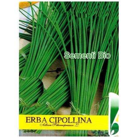 ERBA CIPOLLINA - BIOSEME AR34