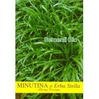 ERBA STELLA O MINUTINA - BIOSEME 7137