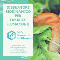 Dissuasore BioDinamico per Limacce - 1 lt