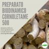 500 CORNOLETAME