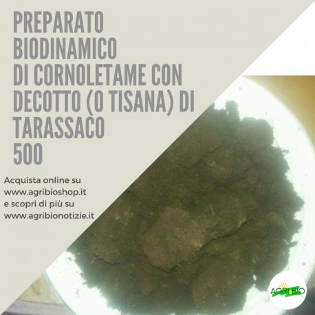 500 CORNOLETAME CON DECOTTO ( O TISANA) DI TARASSACO