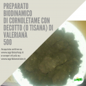 500 CORNOLETAME CON DECOTTO ( O TISANA) DI VALERIANA