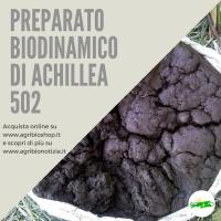 502 PREPARATO DI ACHILLEA