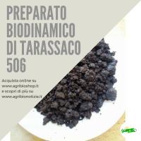 506 PREPARATO DI TARASSACO