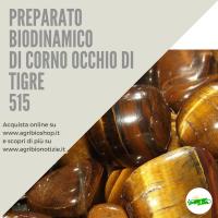 515 CORNO OCCHIO DI TIGRE