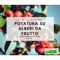 POTATURA SU ALBERI DA FRUTTO