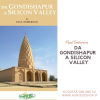 DA GONDISHAPUR A SILICON VALLEY VOL 1 - PAUL EMBERSON