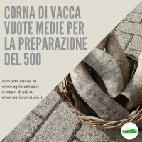 CORNA VUOTE PER 500