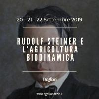 RUDOLF STEINER E L'AGRICOLTURA BIODINAMICA