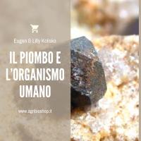 IL PIOMBO E L'ORGANISMO UMANO - EUGEN & LILLY KOLISKO