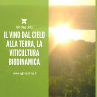 IL VINO dal cielo alla Terra, la viticultura biodinamica - Nicolas Joly