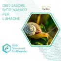 Dissuasore BioDinamico per Lumaca - 1 lt