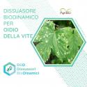 Dissuasore BioDinamico per Oidio della Vite - 1L