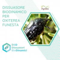 Dissuasore BioDinamico per Oxiterea funesta - 1 L