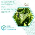 Dissuasore BioDinamico per la Flavescenza Dorata - 1 lt