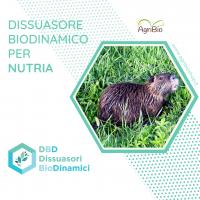 Dissuasore BioDinamico per la Nutria - 1 lt